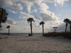 Fred Howard Beach Park in Tarpon Springs, Florida